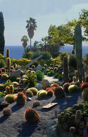 Giardini ravino un parco di piante grasse - Giardini con piante grasse ...
